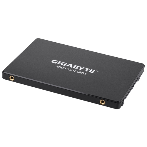 120GB Gigabyte GP-GSTFS31120GNTD